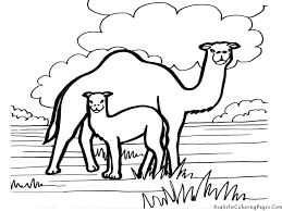 camel coloring page getcoloringpages com