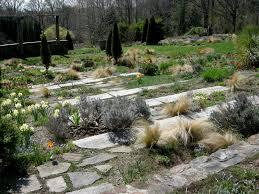 new gravel garden design hammerofthor co