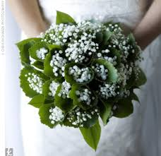 baby s breath flowers 10 tips for using baby s breath in flower arrangements