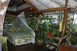 lapa u0027s nest treehouse costa rica treehouse rental