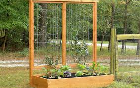 Lowes Arbor Kits by Pergola Trellis At Lowes Momentous Creative Trellis Ideas