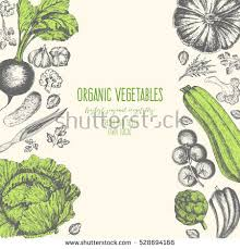 organic stock images royalty free images u0026 vectors shutterstock