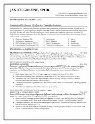 vice president human resources resume samples hr resume templates
