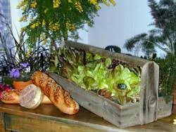 indoors garden edible landscaping how to grow greens indoors garden org