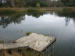 koi lake house benmore ranch