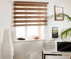 Window Roller Blinds Roller Blinds 12 Options To Choose From Decor Around The World