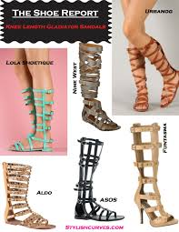 the shoe report knee length gladiator sandals stylish curves