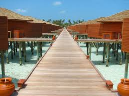 panoramio photo of overwater bungalows at meeru island resort
