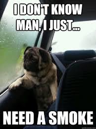 I Don T Know Man Meme - i don t know man i just need a smoke introspective pug