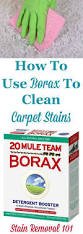 best 25 carpet stains ideas on pinterest clean carpet stains
