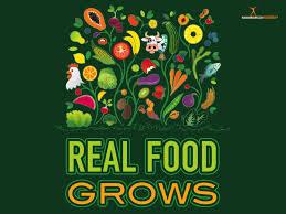 custom real food grows health fair banner 48