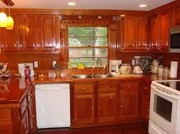 Orange Kitchen Cabinets by Furniture Best Design Ideas Of Mahogany Kitchen Cabinets Vondae