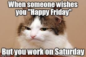 Working Cat Meme - working saturday meme pictures 16