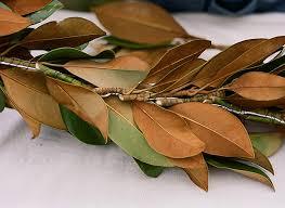 diy magnolia leaf garland snippet ink