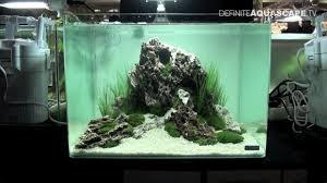 nano aquascape aquascaping qualifyings for the art of the planted aquarium 2015