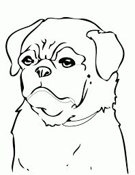 puppies color print printable coloring pages puppies