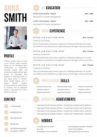 Fashion Resume Templates It Cv Template Network Engineer Cv Template Cv Template 20