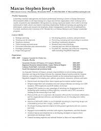 Sample Resume Objectives For Training by Download Sample Profile Summary For Resume Haadyaooverbayresort Com