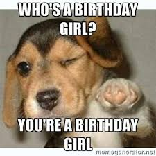 Happy Birthday Memes Funny - who s a birthday girl you re a birthday girl fist bump puppy