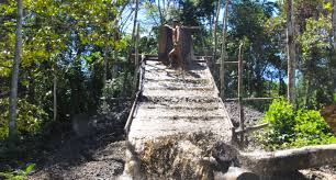 forests november 2017 browse articles peru illegal mining devastates forests in amazonas region