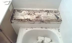 Bathroom Shower Tile Repair Ceramic Tile Repair Services Maryland Washington Dc N Va
