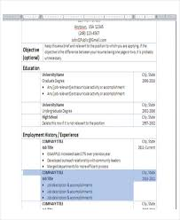 basic resume simple basic resume template best photos of simple