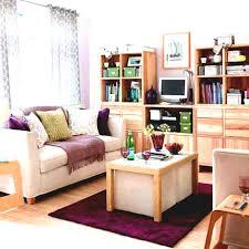 Apartment Living Room Ideas Pinterest Breathtaking Apartment Living Room Decor Photos Inspirations Ideas