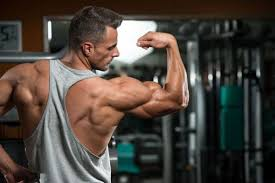 Increase My Bench Press Max The Definitive Guide To Increasing Your Bench Press