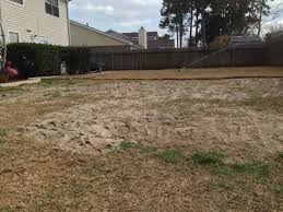 yard fill in and leveling re sodded dj u0027s lawn care and