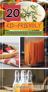 20 kid friendly fermented foods homemade mommy