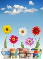 the best flower in the garden stories kabbalah for children