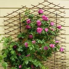 rose trellis diy u2013 outdoor decorations