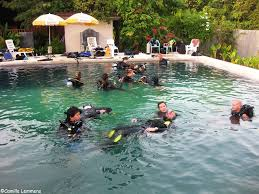 padi diving and instructor development idc around thailand