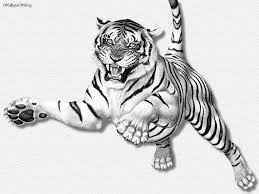 3d tiger drawing 3d tiger drawing in cartoon trick art anamorphic
