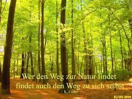 natur sprüche wald bäume laub grußkarten e cards postkarten sprüche symbole