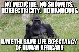 Electricity Meme - no medicine no showers no electricity no on memegen