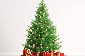 West Ham Christmas Tree Decorations by When Should You Put Your Christmas Tree And Decorations Up Get