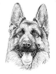 cartoon german shepherd puppy coloring page and pages
