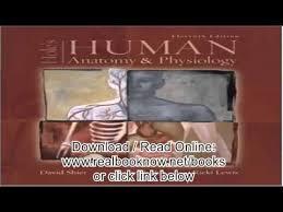 Human Anatomy And Physiology By Elaine Marieb Pdf Human Anatomy And Physiology Pdf Periodic Tables