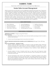 Insurance Agent Job Description For Resume by Financial Advisor Resume Channel Sales Resume Example Voir