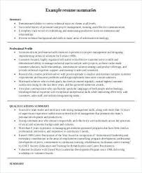 Example For Resume Title by Summary Example For Resume Template Billybullock Us
