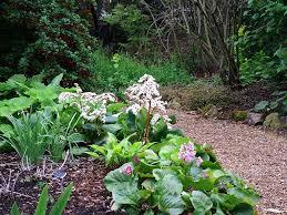 garden path design ideas uk the garden inspirations