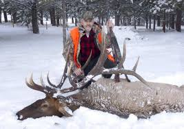 richland man ends his hunting days with once in a lifetime elk