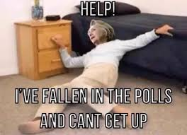 Help I Ve Fallen Meme - jack murphy on twitter help i ve fallen in the polls and can t