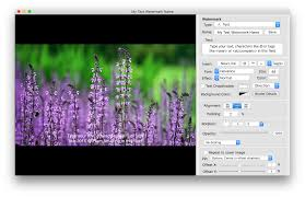 iwatermark pro for mac secure and protect your photos u2013 plum amazing