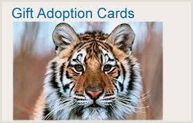 pumpernickel press wildlife cards wildlife christmas cards wildlife christmas cards lizardmediaco