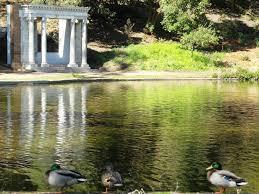 Botanical Gardens Golden Gate Park by Golden Gate Park Wikipedia