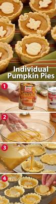 mini pumpkin pies mini pumpkin pies mini pumpkins and pumpkin pies