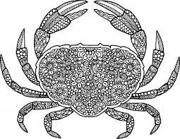 Crab Coloring Page Kidspressmagazine Com Crab Coloring Page