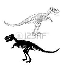 illustration animal bones royalty free cliparts vectors and